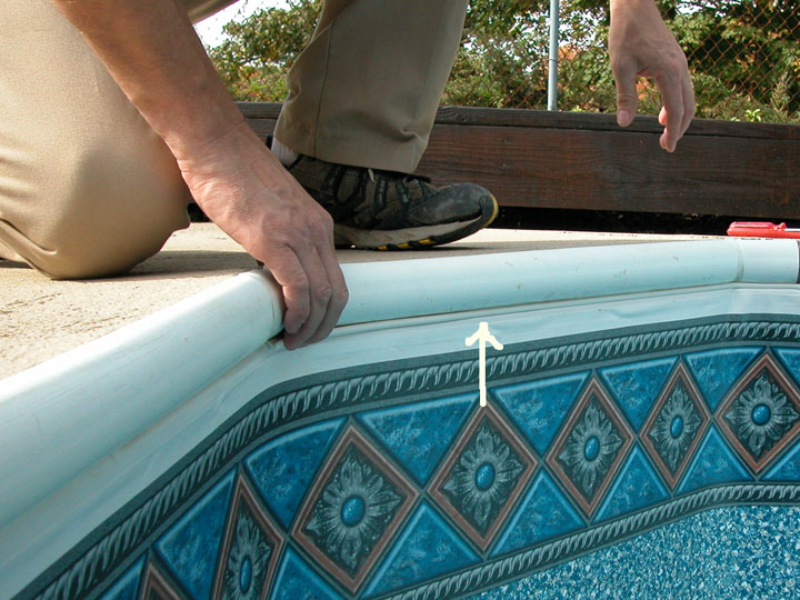 Inground Pool Coping Replacement Music Search Engine At
